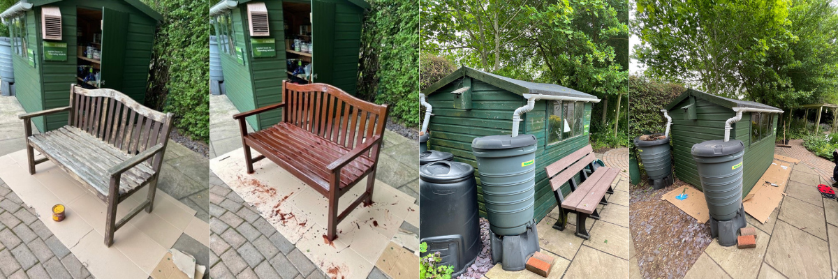 Garden bench and shed